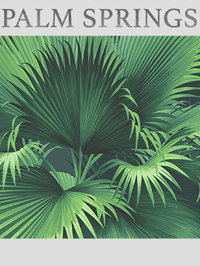 Wallpapers by Palm Springs Book