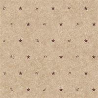 Barn Star Sidewall