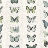 Jewel Butterflies Stripe Wallpaper