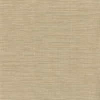 Cape Town Beige Faux Silk Wallpaper
