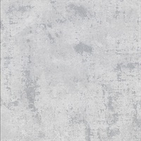 Darius Grey Plaster Texture Wallpaper