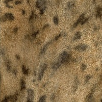 Dark Brown Jaguar Fur