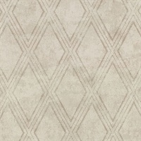 Dartmouth Taupe Faux Plaster Geometric Wallpaper