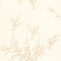 Delia Cream Blossom Wallpaper
