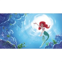 Disney The Little Mermaid Part Of Your World