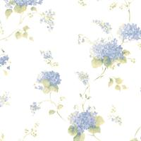 Hortensia Trail Wallpaper
