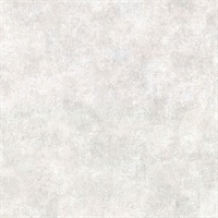 Hereford Light Grey Faux Plaster Wallpaper