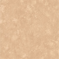 Illarum Taupe Distress Texture Wallpaper