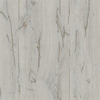 Jackson Taupe Wooden Plank Wallpaper