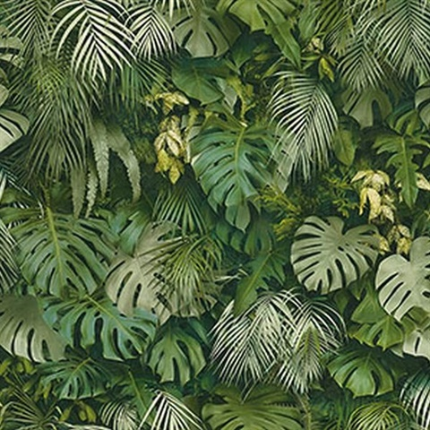 Luana Green Tropical Forest Wallpaper