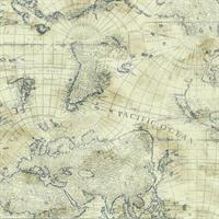 Map Toile