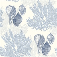 Nauset Blue Seashell Shores Wallpaper