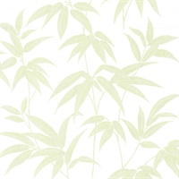 Sasa Green Bamboo Leaf Wallpaper