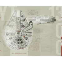 Star Wars TM Millennium Falcon Pre-Pasted Mural