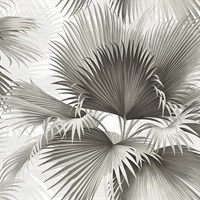 Summer Palm Charcoal Tropical Wallpaper