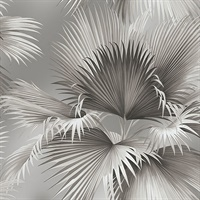 Summer Palm Platinum Tropical Wallpaper