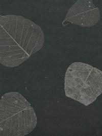 Textured Leaves