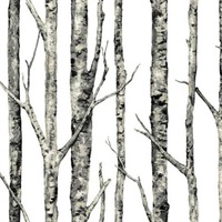 the-birches-swux.jpg