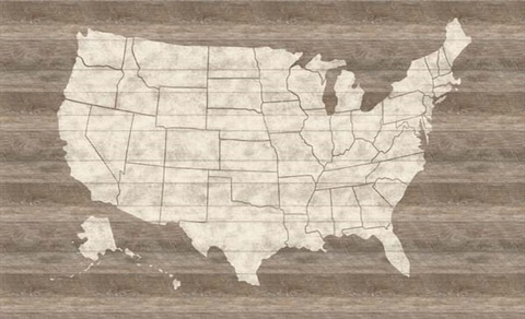 United States Map Mural